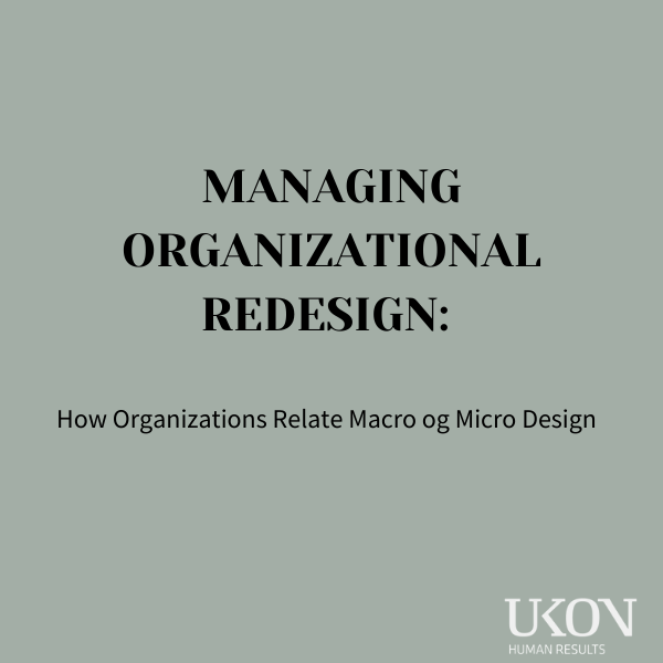 MANAGING-ORGANIZATIONAL-REDESIGN_-How-Organizations-Relate-Macro-og-Micro-Design